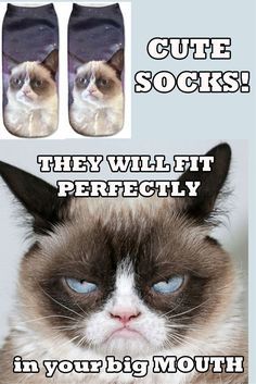 In Stock: $12.95 Cute cat socks!! Cat socks collectibles. Must haves!