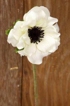Cream White Silk Anemone Flowers 15in