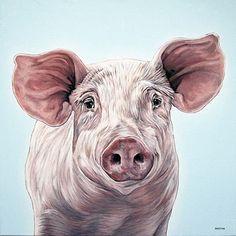 Pig by Clara Bastian