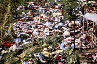 """""""Jonestown, Guyana was the scene of one of the most harrowing tragedies in American history. On November 18, 1978, at the direction of charismatic cult leader Jim Jones, 909 members of the People's Temple died, all but two from apparent cyanide poisoning, in a 'revolutionary suicide.'"""" #jonestown #massacre"""
