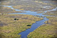 The okavango delta is a must see attraction that should be on your list of things to do Safari Adventure, Fishing Adventure, Family Adventure, Adventure Travel, Kruger National Park, National Parks, Camping Tours, The Great Migration, Wildlife Safari