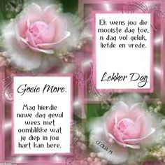 Lekker Dag, Goeie Nag, Goeie More, Afrikaans Quotes, Special Quotes, Day Wishes, Morning Greeting, Bible Verses, Lilac