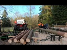 How you could build a shed using only fresh wet wood direct from the forest. Also how you load heavy logs on a wagon manually and effortlessly easy, and then. Gas Powered Mini Bike, Log Saw, Wooden Sheds, Post And Beam, Building A Shed, Stone Houses, Shed Plans, Fresh Green, Homesteading