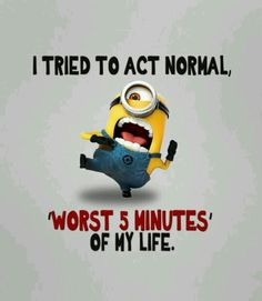 """Just try these """"Top Funny Minions Whatsapp DP"""" for getting laugh.if you read out these """"Top Funny Minions Whatsapp DP"""" then you got a happy and hilarious day. Funny Minion Memes, Minions Quotes, Funny Jokes, Hilarious, Funniest Jokes, Funny Gifs, Funny Dp, Minion Humor, Gym Memes"""