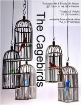 cagebirds - Google Search