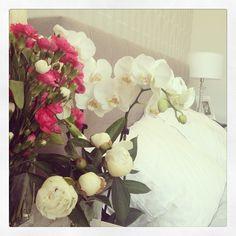 dariapogo's photo on Instagram #peonies #finally :)