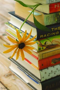 """""""Summer Reading"""" by Majorlight; via Flickr ~ """"I read so I can live more than one life in more than one place."""" Ann Tyler ~"""