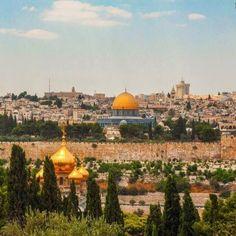 Jerusalem-Occupied Palestine