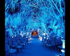 Wow- Great for a Winter themed event.