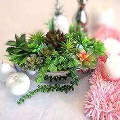 Donica wypełniona sukulentami Cacti, Plants, Christmas Decor, Atelier, Cactus Plants, Plant, Planets