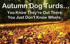 Autum dog turds - http://www.jokideo.com/