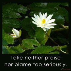 Praise & Blame