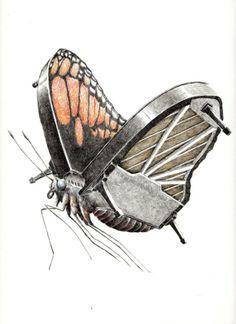 レドマー・フックストラ > 蝶々のグランドピアノ