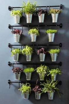 The FINTORP series was actually designed to help you organize the kitchen, but it makes a creative and beautiful way to show off your foliage. Perfect for that blank wall in your living room, as an alternative to hanging artwork. #vegetablegardening