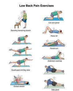 Exercices pour le bas du dos/ Lower back exercises