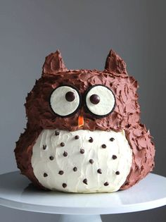 Prepare this adorable and delicious cake for your kid's birthday! Eule owl