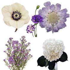 Lush Garden Romance DIY Flower Combo 350 d73cb15e