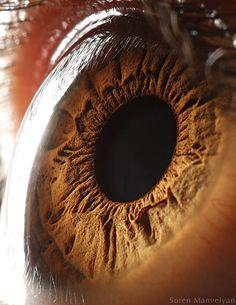 Es extraño mirar a los ojos tan de cerca. Nunca pensé que unos ojos pudieran ser así.