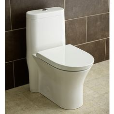 how to instal and troubleshoot dual flush one-piece toilet