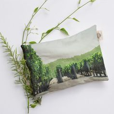 Winery Collection No5 Relaxation Pillow Heat by LemoneeOnTheHills