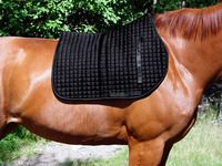 Horse saddles do rub if used a lot without the cushioning of a saddle pad. It is particularly important to use a saddle pad if you ride consistently, train or breed horses. If you want to make a saddle pad it is very easy and this article should explain to you the best way to do so.