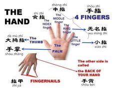 Learn Chinese in an Easy Way – Body Part 5 with audio [www.digmandarin.com]