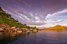 Komodo National Park is located between the islands of Sumbawa and Flores in Indonesia and consists of Komodo, Rinca, Padar and other smaller islands. Komodo National Park, National Parks, Sailing Adventures, Small Island, River, Outdoor, Outdoors, Outdoor Games, The Great Outdoors
