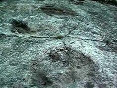 Sezze (Latina) - Pista con impronte fossili di dinosauro - © All rights reserved - Tesori del Lazio
