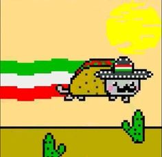 """SINGLE GIF: """"4 Insanely Clever Taco Hacks You'll Wish You Knew About Sooner.""""                      NOTE: PRESS """"READ IT"""" FOR INSTRUCTIONS & TIPS FOR THE CONSTRUCTION OF A TACO.     (There are no cartoon gifs in that section -- all are gifs of actual taco preparation.)     (Pinned both to Graphics - GIFs - Cartoon Animals-Cats-Nyan Cat..., Graphics - GIFs - Cartoon Food..., & Graphics - GIFs - FAVORITES.)"""