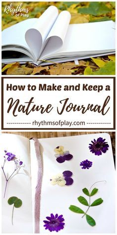 How to Make (and Keep) a Nature journal. DIY Nature journals make it fun for kids (and adults) to study nature. Record observations, create art and write learning experiences in the natural Forest School Activities, Activities For Adults, Outdoor Activities For Kids, Nature Activities, Outdoor Learning, Kids Learning Activities, Summer Activities, Craft Activities, Crafts For Kids