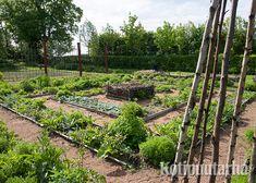 Yrttilabyrintti on myös lasten suosikki! Patio, Plants, Garden, Backyard Farming, Plant, Planets, Terrace
