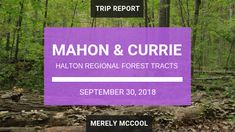 Hiking Halton Region