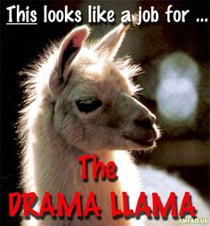 Anytime I see someone being dramatic, I'm now saying this.