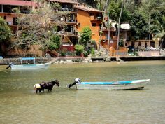 Boca de Tomatlan -Mexico. Can you say cross that river to get to your house? I did!