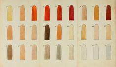 Watercolor chart.Cours theorique et pratique de peinture a l'aquarelle. 19th century.