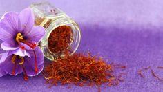 Crocus à Safran ou crocus sativus : planter, cultiver et récolter votre safran Saffron Crocus, Saffron Flower, Saffron Plant, Culture Du Safran, Saffron Health Benefits, Growing Saffron, Spanish Saffron, Saffron Spice, Spices And Herbs