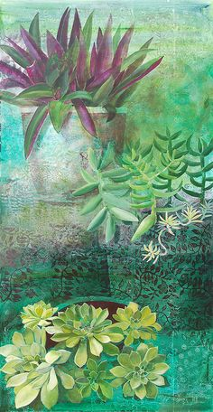 Suculent by cate edwards, via Flickr