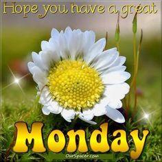Monday Greetings