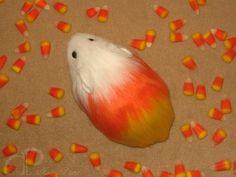 candy corn guinea?!