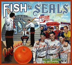 San Francisco Seals! <3