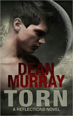 Torn by Dean Murray (a Reflections novel) I loved this book. It's told from Alec's perspective.