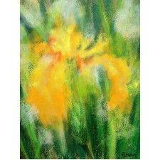 Del iris amarillo #arte #contemporaneo #elche #art #paintings #antoniasoler #contemporaryart #flowers http://antoniasoler.com/del-iris-amarillo