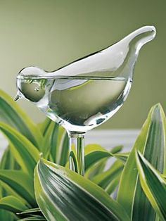 I love these!  And they come in pairs...how nice!  That means I need only to save up for...um...five -- nope -- six sets.  Sure hope that they still have stock by the time I get 'em ordered!   :)    --Bird Plant Waterer (set of 2) | Solutions