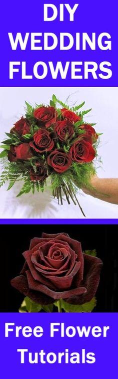 Wedding Roses Bulk Flowers On Pinterest Floral Supplies Wedding