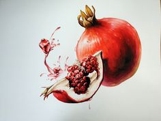 Business Card Design, Pomegranate, Still Life, Design Elements, Watercolor, Painting, Rome, Art, Fruits And Vegetables Images