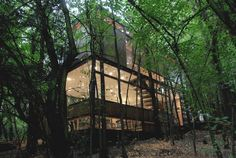 Contemporary House in the Forest Apollo 11, Chile