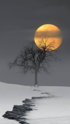 Photography Discover Winter snow moon Source by Moon Pictures Nature Pictures Moon Pics Moon Photography Landscape Photography Afrique Art Shoot The Moon Moon Painting Beautiful Moon Beautiful Nature Pictures, Beautiful Nature Wallpaper, Beautiful Moon, Amazing Nature, Beautiful Landscapes, Landscape Wallpaper, Scenery Wallpaper, Moon Photography, Landscape Photography