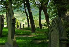 Ploughed field and graveyard