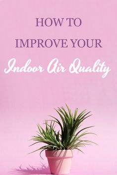 Improving your indoor air quality can benefit your health, reduce dust in your home, and help everyone in your home breathe easier. Learn how to improve your air quality from our HVAC experts. Duct Insulation, Duct Cleaning, Air Pollution, Heating And Cooling, Indoor Air Quality, Breathe, Benefit, Improve Yourself, Health