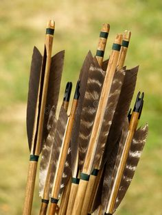 Archery arrows. Bunch of wooden archery arrows, arrow tails made with brown feat , #Sponsored, #Bunch, #wooden, #Archery, #arrows, #archery #ad